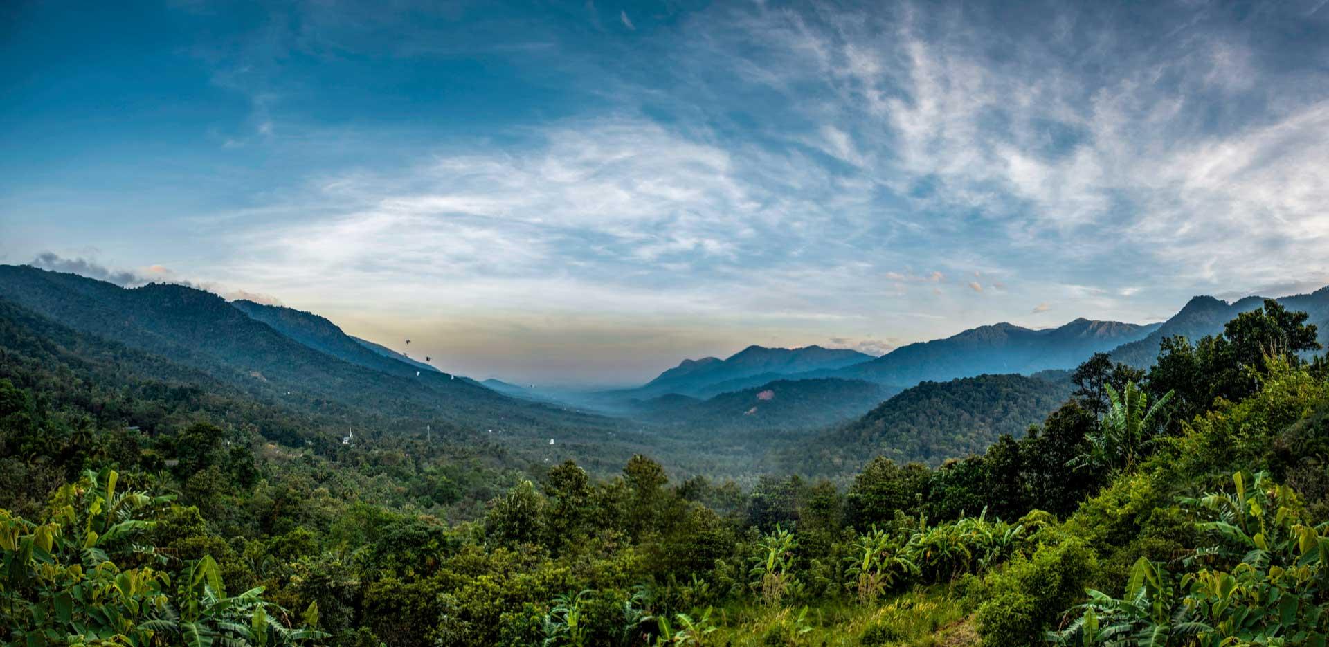 Serene South India - Bangalore, Mysore, Coorg And Waynad