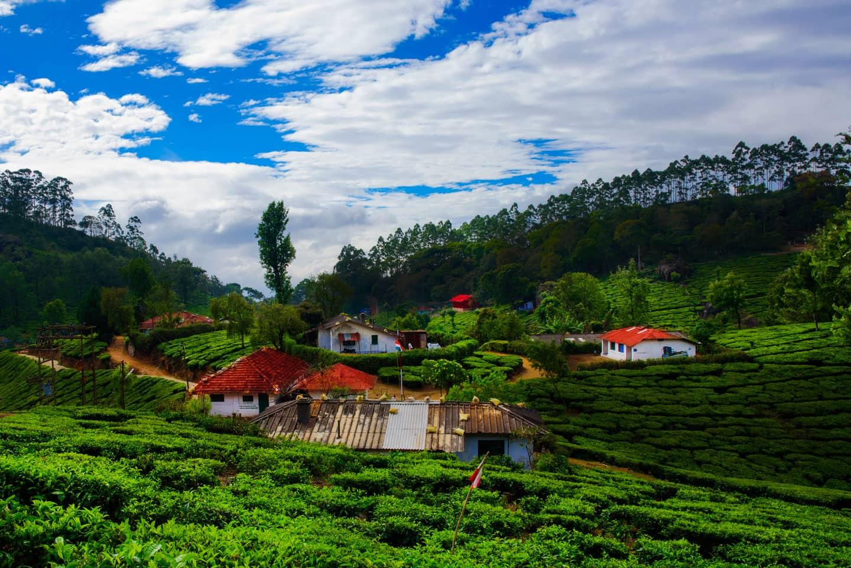 Kerala Luxury Honeymoon_7 Days
