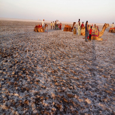 Rann of Kutch Package Tour