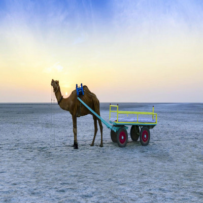 Rann of Kutch Travel Plan