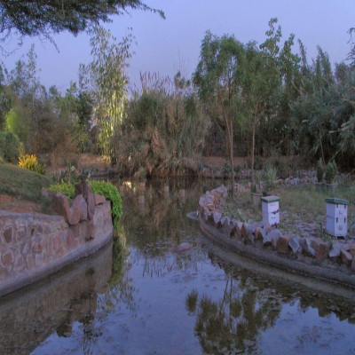 Garden of five senses Place to visit
