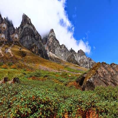 Lachung Lachen and Yumthang Valley Package Tour