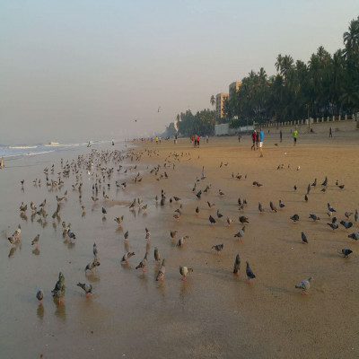 Juhu Beach Tours