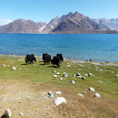 Pangong Lake Places to See