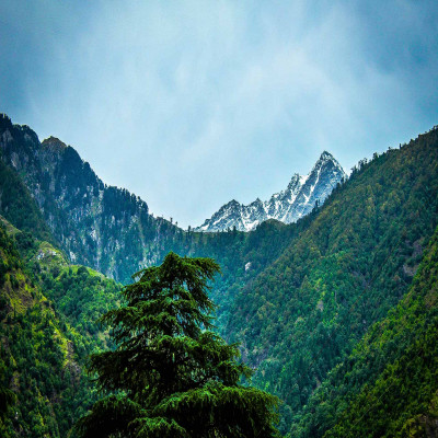 McLeod Ganj Package Tour