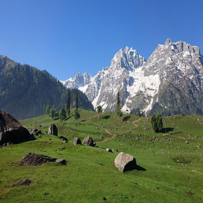 Sonamarg Sight Seeing Tour