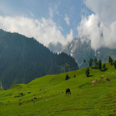 Sonamarg Sightseeing