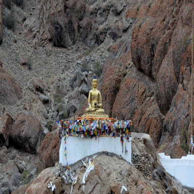 Hemis Sight Seeing Tour