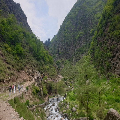 Dachigam Sight Seeing Tour