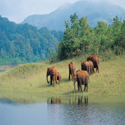 Munroe_Island_Kerala_Package_Tour