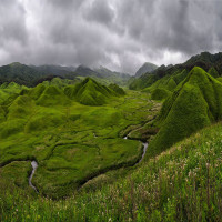 Dzukou_Valley_Attractions