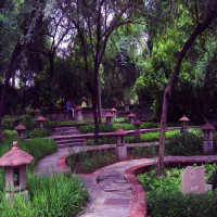Garden_of_five_senses_Attractions