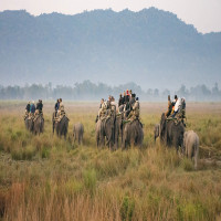 Kaziranga_National_Park_Attractions