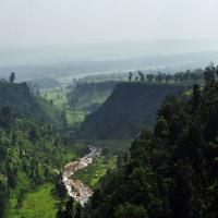 Chilapata_Forests_Siliguri_Sightseeing