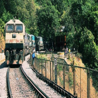 Dudhsagar Falls Sight Seeing Tour
