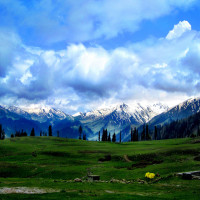 Gulmarg Sightseeing