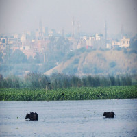 Okhla Bird Sanctuary Place to visit