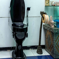 Sulabh International Museum of Toilets Place to visit