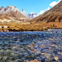 Lachung Lachen and Yumthang Valley Trip