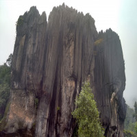 Yana Caves Tours