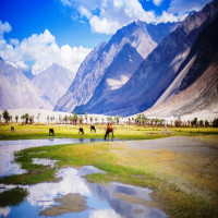 Nubra Valley Places to See