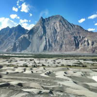 Nubra Valley Trip