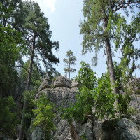 Robbers Cave Package Tour