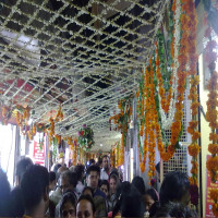 Shri_Banke_Bihari_Mandir_Attractions Sight Seeing Tour