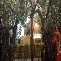 Chintpurni Temple Package Tour