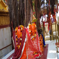 Chintpurni Temple Tours