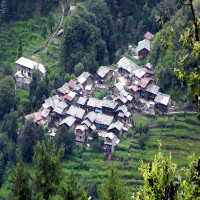 Barot Valley Package Tour