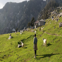 Triund Travel Plan