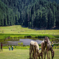 Khajjiar Place to visit