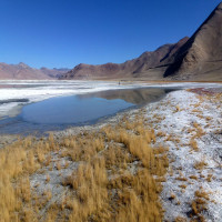 Tso Kar Lake Sight Seeing Tour