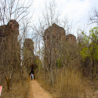 Bhimbetka Rock Shelters Tours