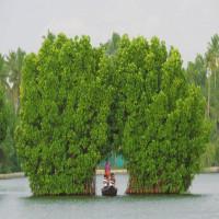 Munroe_Island_Kerala_Travel