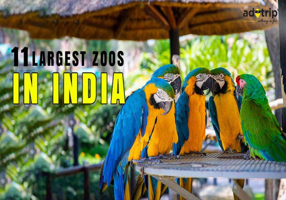 Largest_Zoos_in_India