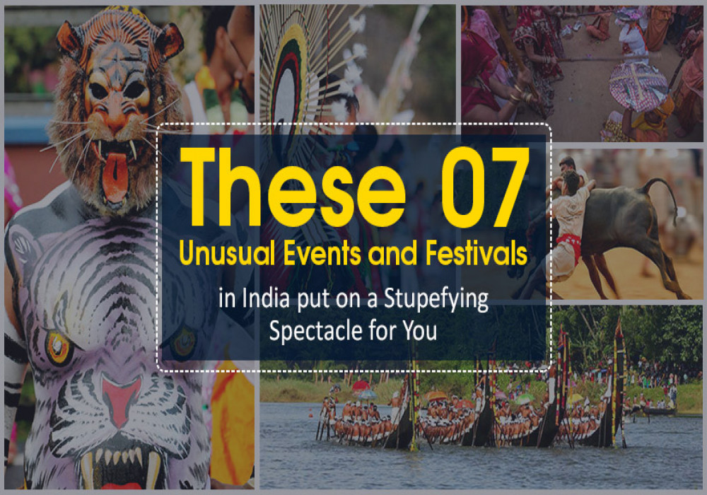 unusual-events-and-festivals-in-india