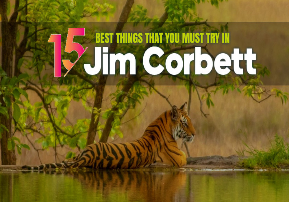 Best_Things_to_Do_on_Your_Trip_to_Jim_Corbett
