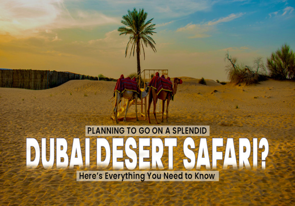 Things_to_Know_About_Desert_Safari_In_Dubai