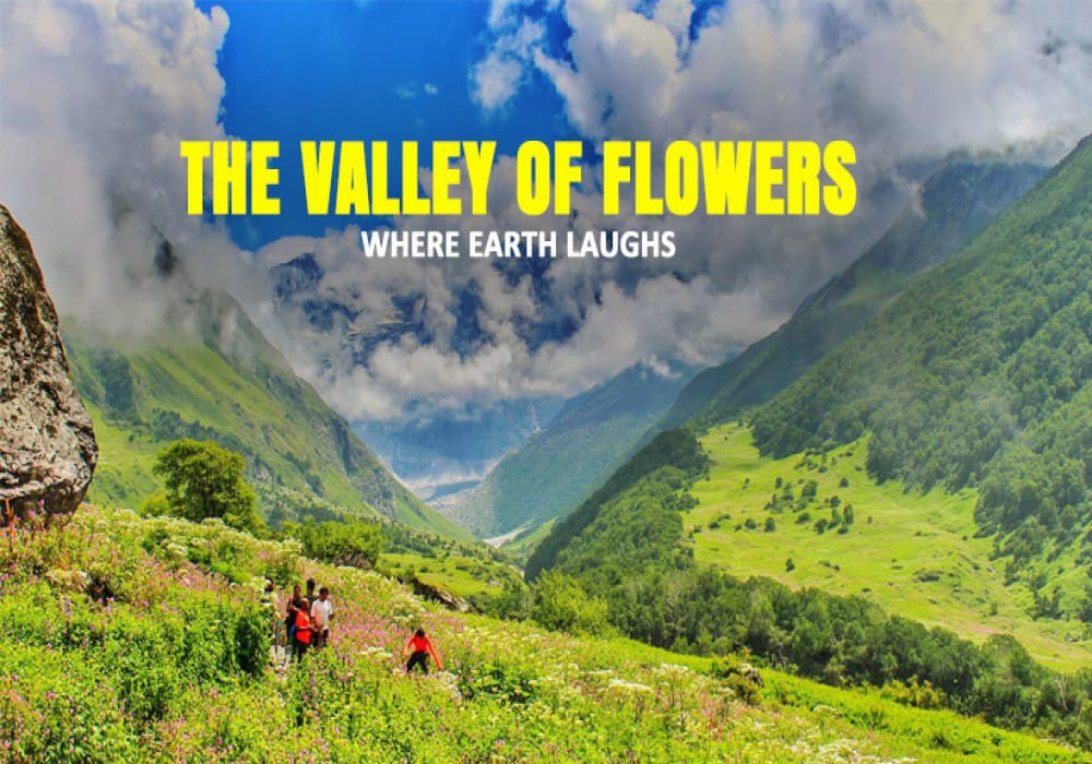 Valley-Of-Flowers-Cover