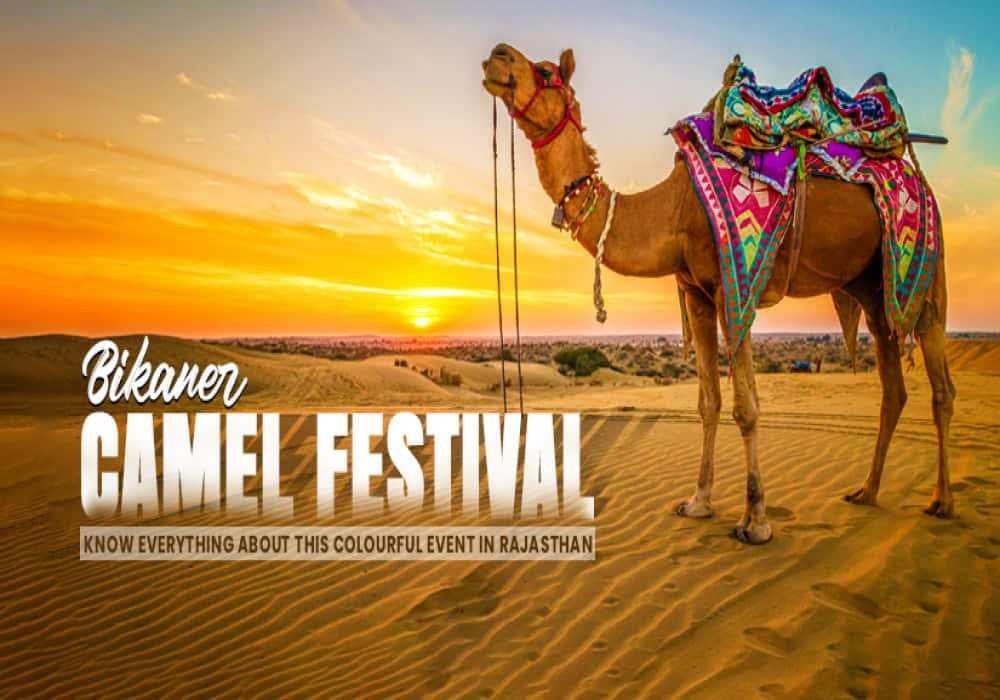 Bikaner_camel_festival_in_Rajasthan