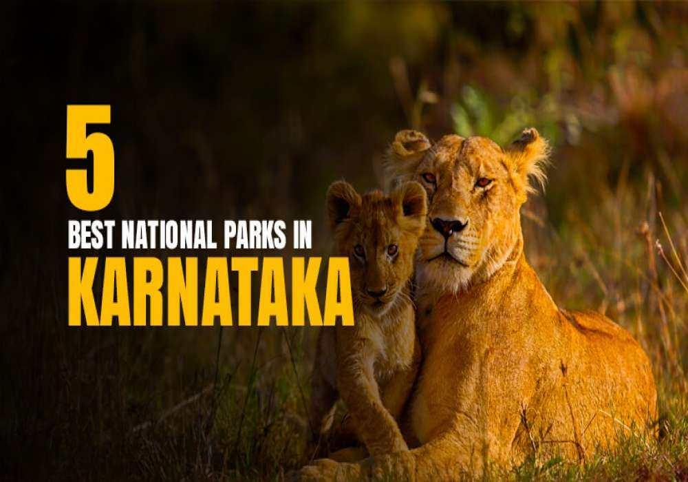 5_Best_National_Parks_In_Karnataka