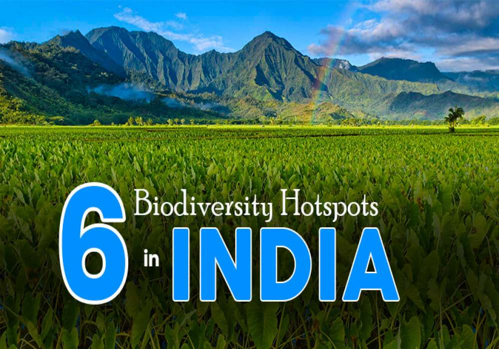 6_Biodiversity_Hotspots_in_India