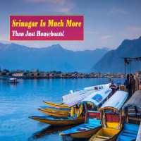 Srinagar_Main