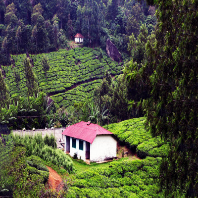 Wayanad_Attractions