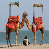 Gir Somnath District Places to See