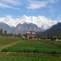Kangra City Tours