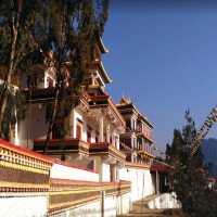 Solan Package Tour