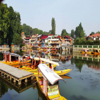 Kashmir Sight Seeing Tour